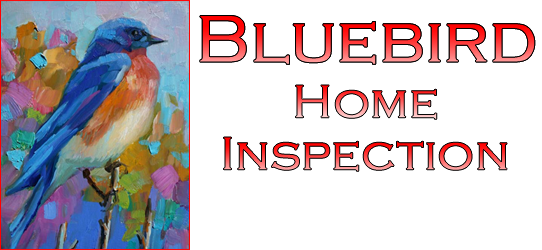 Bluebird Home Inspection and Handyman Services